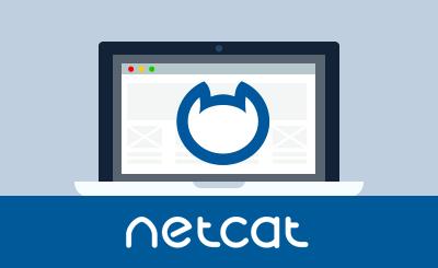 Знакомcтво с CMS NetCat