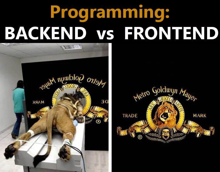 Что выбрать — frontend или backend 5