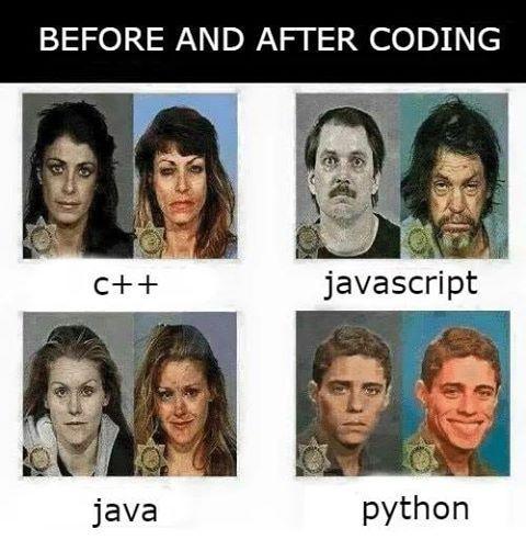 Программисты на разных языках, мем