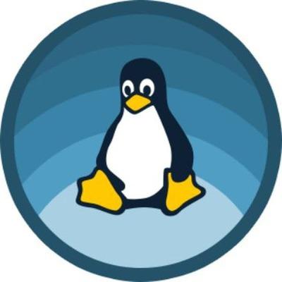 Базовые команды в ОС Linux